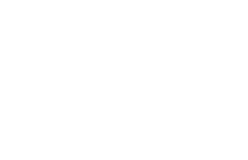 IGES Institute for Global Environmental Strategies