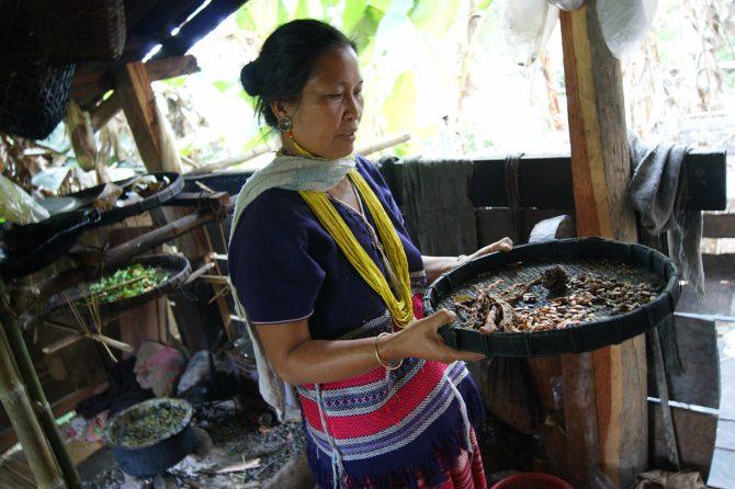 A Karen woman explaining about traditional crop varieties © Prasert Tarakansuphakon