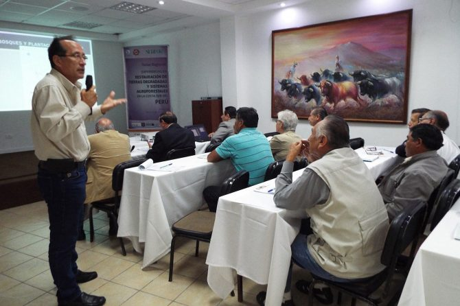 Technical workshop with participation of project beneficiaries. Photo J. Malleux 2015