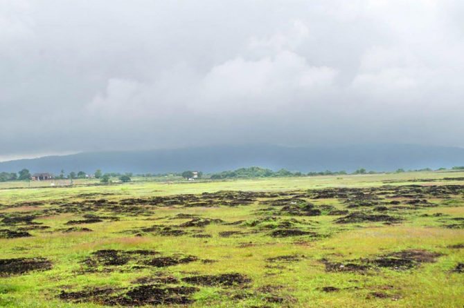 Landscape of Madayippara, a laterite hill in Northern Kerala
