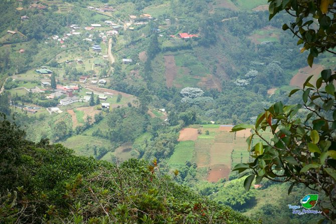 View of the SEPLS from San Antonio Forest Hill towards Elvira village