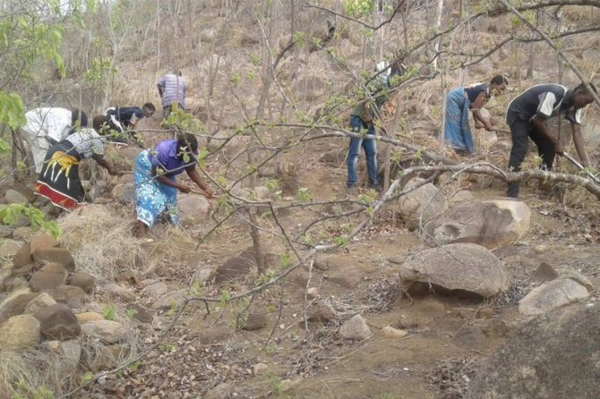 Community members managing part of Michiru I hill to encourage forest regeneration