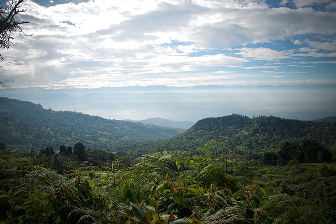 Panoramic view of the landscape of a Key Biodiversity Area, San Antonio Forest/KM 18