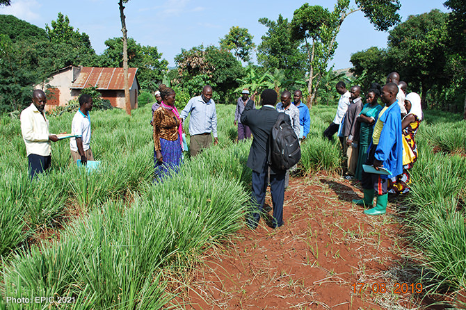 Farmers visit Vetiver glass nursery for the community during training organised by the project