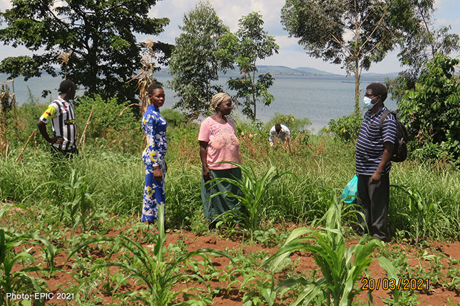 A farmer on the shore line of Lake Victoria in Uganda, established a Vetiver grass barrier in her crop field to control soil erosion