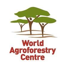 World Agroforestry Centre (ICRAF)
