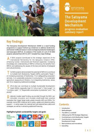 The Satoyama Development Mechanism progress evaluation summary report